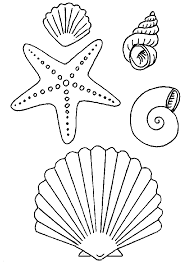 Small Picture Shells coloring pages