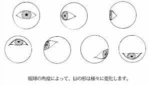 初心者は必見目の描き方の原理原則を解説お絵かき講座パルミー