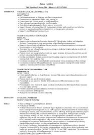 Trade Resume Examples Trade Coordinator Resume Samples Velvet Jobs 15
