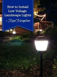 install landscape lights how to install low voltage landscape lights that also repel pretty cost to