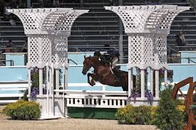 Patricia Griffith and Sienna Win $10,000 Johnson Horse Transportation USHJA  International Hunter Derby - Show World