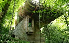 wilkinson residence  robert harvey oshatz  organic architect