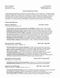 Sample Resume For Experienced Operations Manager Best Resume