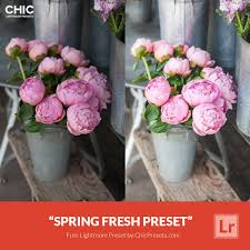 Free Spring Free Lightroom Preset Spring Fresh Download Now