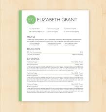 Professional cv template word document for Word document resume template .  Cv templates for word doc ...