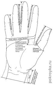 Выкройка <b>перчаток</b>. Как самостоятельно пошить <b>перчатки</b> ...