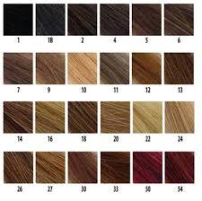 Color Chart Discount Diva Lace Wigs