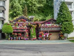 Small Picture West Seattles Flower Houses Real Estate GalsReal Estate Gals