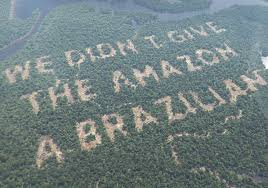 amazon rainforest deforestation. Delighful Rainforest The Bookmaker Paddy Power Shared This Image After Receiving Hundreds Of  Messages From People Angered By In Amazon Rainforest Deforestation