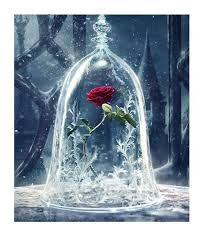 beauty and the beast rose easy 3d diy diamond painting kits owlcube canvas wall art rose beautyandtast diamondpaintings