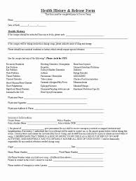 Background Check Consent Form Uber Best Of Reference Check Form ...