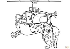 Beautiful Skye Coloring Pages Everest Paw Patrol Stock Photos Hd