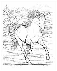 Small Picture Wonderful World of Horses Coloring Book Dover Nature Coloring