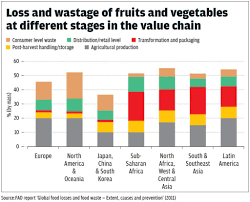 Each Year Half The Fruits Vegetables World Produces Are