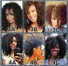 African American Natural Hair Type Chart The Best Methods To Determine Your Hair Type Texture