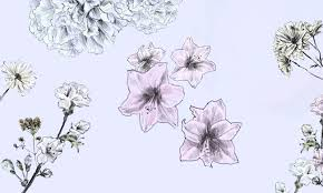Small Picture Blooming Garden Learn How to Draw Flowers in Just 4 Steps