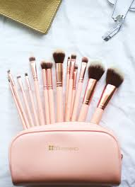 gorgeous 14 piece brush set i have heard so many good things about this brand they sell affordable make up and brushes and everything is free