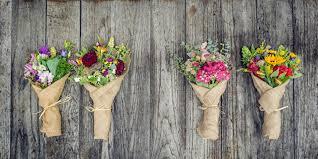 ciw stories steven dyme s flowers for