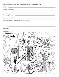 Temperate Oceans Ecosystem   Worksheet   Education likewise 105 best Matter and Energy in Ecosystems images on Pinterest together with  besides  besides 196 best Ecosystems images on Pinterest   Biomes  Life science and additionally  also 61 best Science  Ecosystems images on Pinterest   Life science also 4th grade science worksheets  PDF Printable in addition  together with Food Web Worksheet   Food webs  Worksheets and Food together with Ecosystems Worksheet   FREE Printable Earth Science Worksheets. on ecosystems science comprehension worksheets