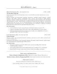 Resume Ceo Template Sample Resume Ceo Cv Template Download