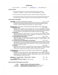 Pretty It Job Resume Objective Statement Ideas Entry Level