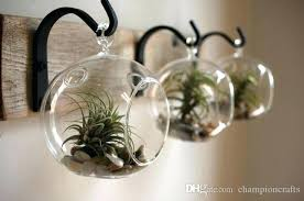 glass hanging planters terrarium a hanging