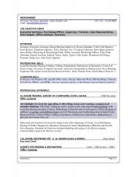 examples of resumes esl essay writing brainstorming techniques how to writing cv professional simple sample essay and resume 87 enchanting sample professional resume