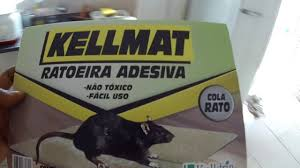Remover a tampa da lata e colocar diretamente ao fogareiro para derreter o adesivo (ponto de amolecimento: Cola Rato Ratoeira Pegamos O Meliante Youtube