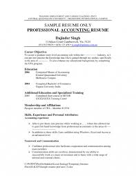 What Should Be The Career Objective In Resume What To Put For Objective On Resume Prepossessing My Objective 8