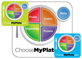 Food Pie Chart Usda Will A New Myplate Icon From Usda Change Your Eating Habits