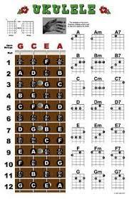 Ukulele Fretboard And Chord Chart Instructional Poster Uke