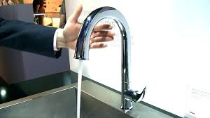 pull down kitchen faucet with soap dispenser reviews kohler malleco parts