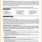 Professional Resume Writers Dallas Professional Resume Writing Service Orange County Writers