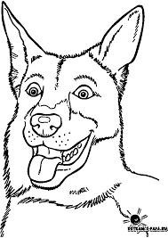 Animaux Dessin Imprimer Prefix Chien Loup Coloriage X En Dessin