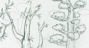 木を描くには押さえておくとよい描き方 イラストの描き方ねっと