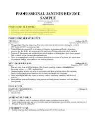 How To Write A Profile Resume Impressive How To Write Profile For Resume Bino48terrainsco