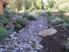 Small Picture A dry creek bed complete with Australian natives This is almost