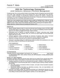ceo technology resume sample sample technology resume
