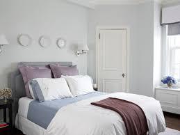 cozy guest room traditional bedroom