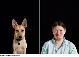 the lady the dog essay lady the dog essay terminally ill cancer patient amy krouse rosenthal left wrote a