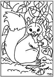 Squirrel Color Page Squirrel Coloring Pages Cute Squirrel Coloring