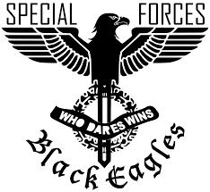 Image - Black Eagles Logo American Eagle Head.png | CrazyBob's Cops ...