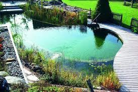 diy natural swimming pool kit