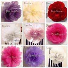 Large Tissue Paper Flower Details About Paperbloomz Large Tissue Paper Flowers X 5 Wedding Events Back Drops Wall Decor