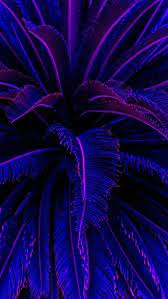 Purple Plant Tunnel Aesthetic Ultra HD ...