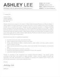 Gallery Of Headings For Cover Letters