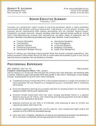 Executive Resume Objective Examples Best Of Senior Executive Resume Sample Of Executive Executive Resume