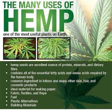 benefits of hemp products