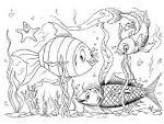Раскраска с рыбками