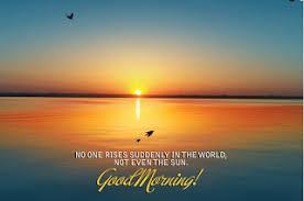 good morning scenery view hd wallpaper